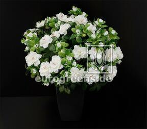 Artificial bouquet Belgian Azalea white 40 cm