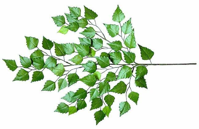 Artificial branch Birch 60 cm