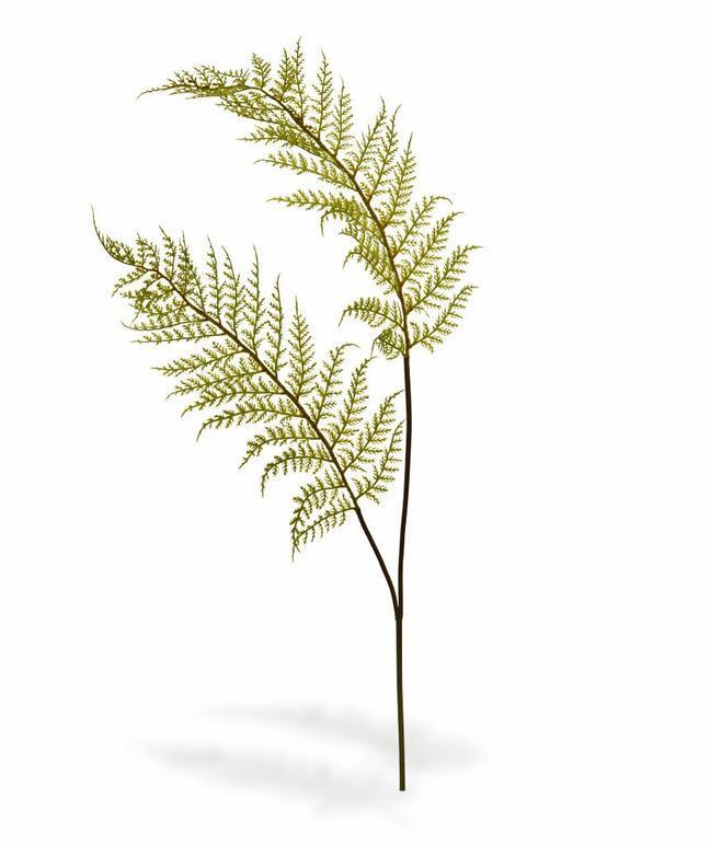 Artificial branch Fern 80 cm