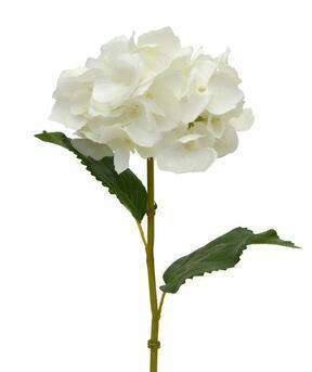 Artificial branch Hydrangea cream 45 cm