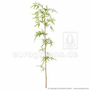 Artificial branch Japanese Bamboo 150 cm