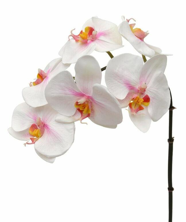 Artificial branch of Orchid pink-white 55 cm