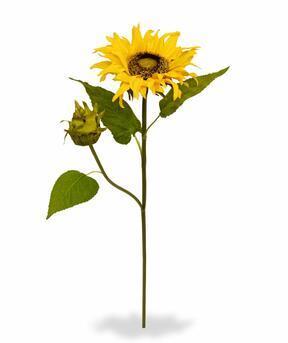 Artificial branch Sunflower 55 cm