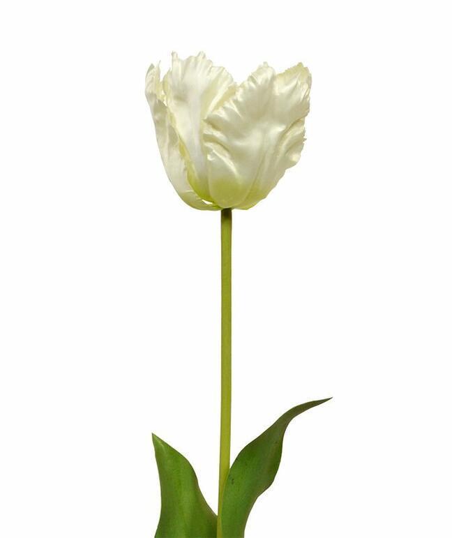 Artificial branch Tulip cream 70 cm