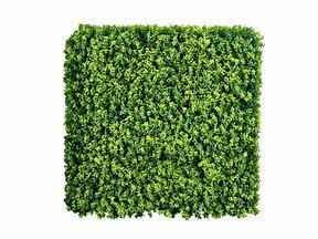 Artificial deciduous panel Buxus - 50x50 cm