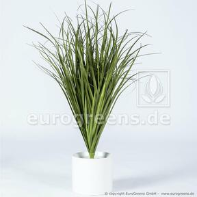 Artificial grooving bundle of grass Common reed 80 cm