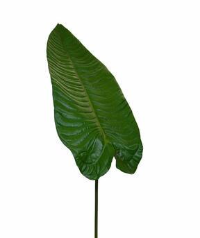 Artificial leaf Allocation 165 cm