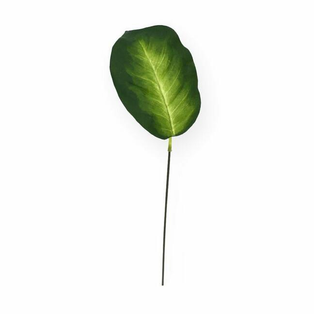 Artificial leaf Dífenbachia 15 cm