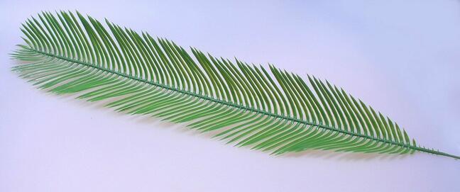 Artificial leaf palm Cycas 80 cm
