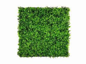 Artificial leaf panel Stonecrop - 50x50 cm