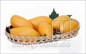 Artificial Mango yellow