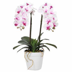 Artificial Orchid 43 cm