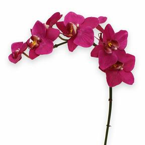 Artificial orchid plant purple 80 cm
