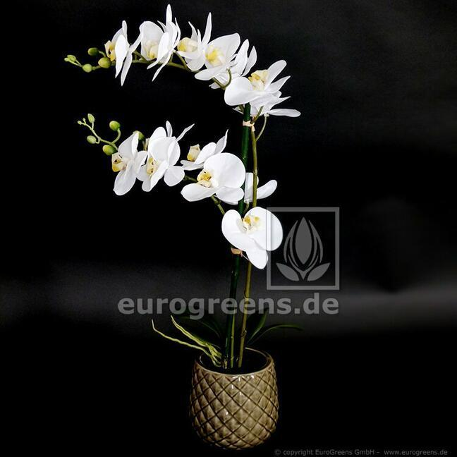 Artificial orchid plant white 65 cm