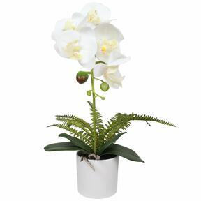 Artificial Orchid white with fern 37 cm