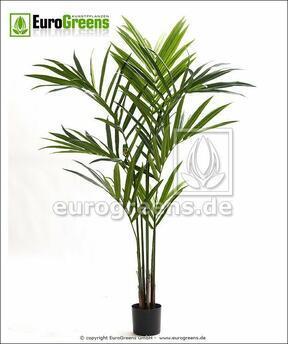 Artificial palm Kentia 170 cm