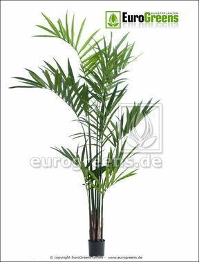 Artificial palm Kentia 240 cm