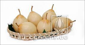Artificial Pear Nashi