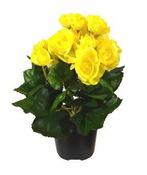 Artificial plant Begonia yellow 25 cm