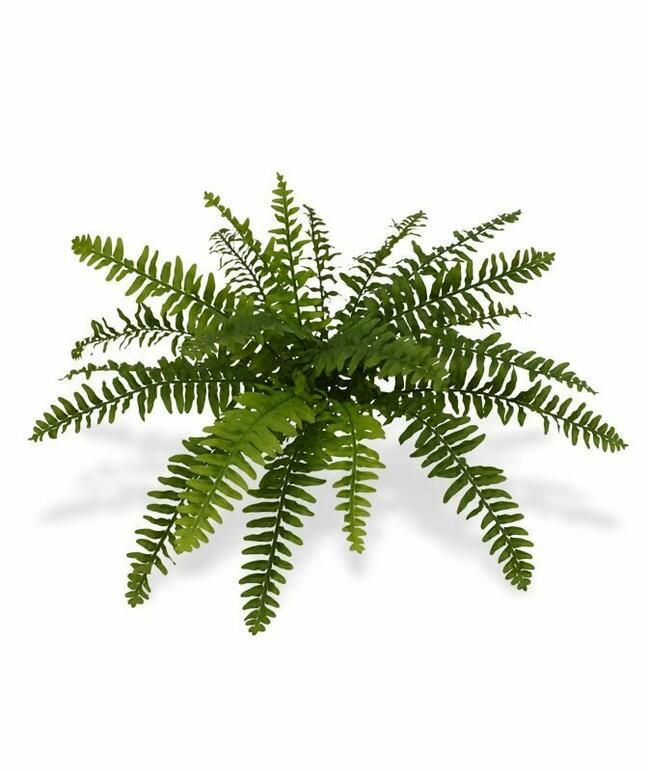 Artificial plant Boston fern 40 cm