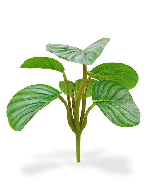 Artificial plant Calathea orbifolia 20 cm