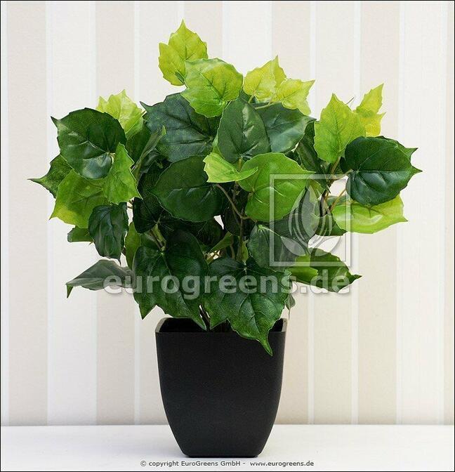 Artificial plant Cisus 40 cm