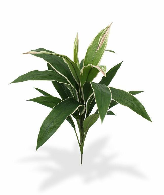 Artificial plant Dracena fragrant 60 cm