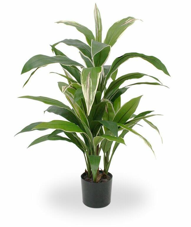 Artificial plant Dracena fragrant 80 cm