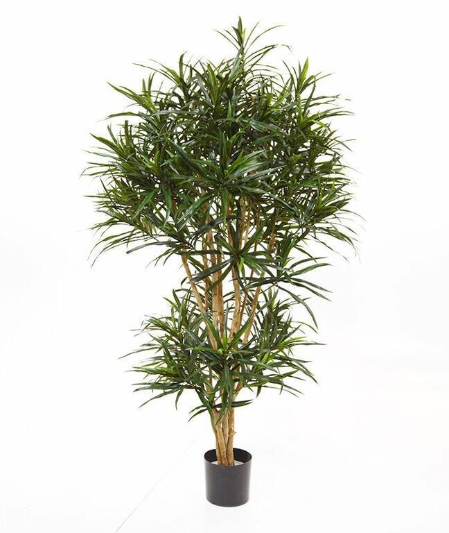 Artificial plant Dracena reflex 160 cm