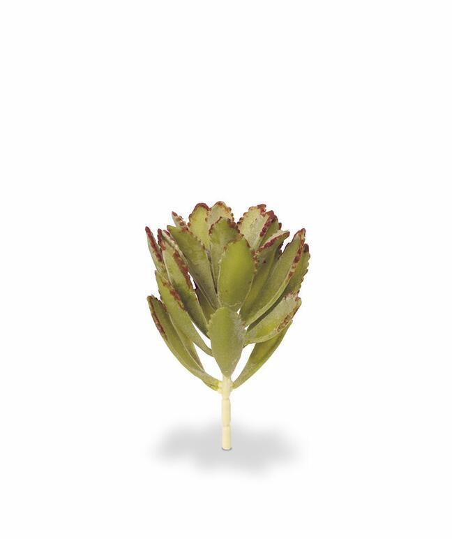Artificial plant Eševéria 15 cm