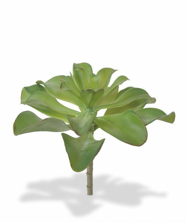 Artificial plant Eševéria 20 cm