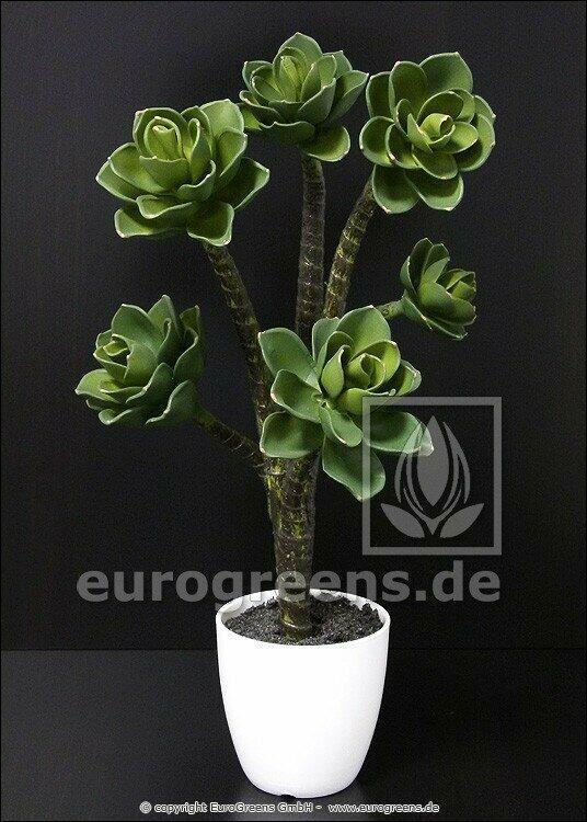 Artificial plant Eševéria 55 cm