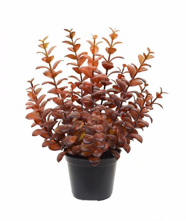Artificial plant Eucalyptus burgundy-red 30 cm