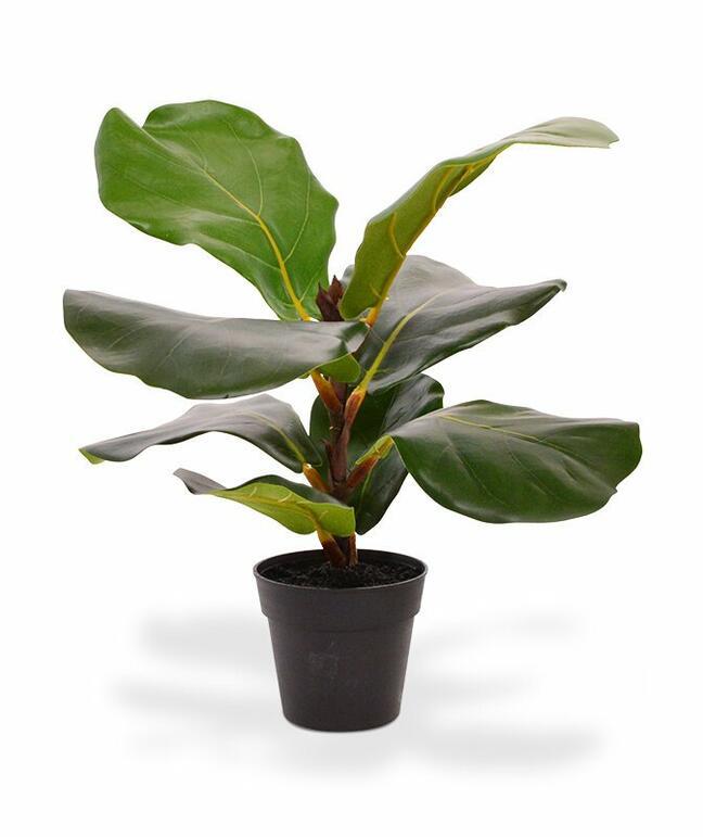 Artificial plant Fig tree 30 cm