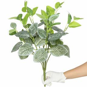 Artificial plant Fitónia white 45 cm
