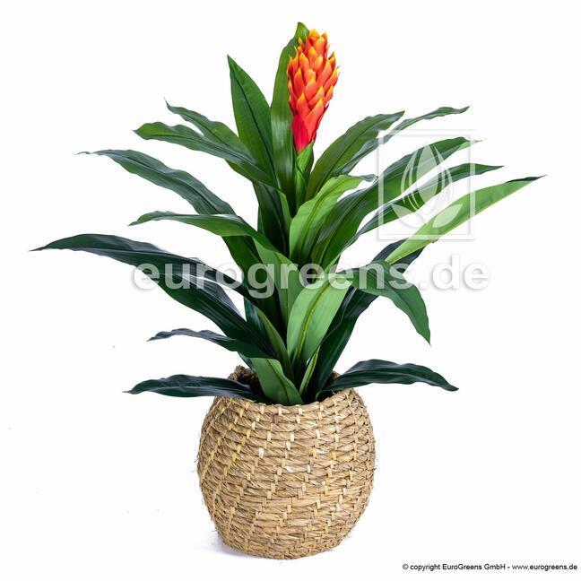 Artificial plant Guzmánia 100 cm