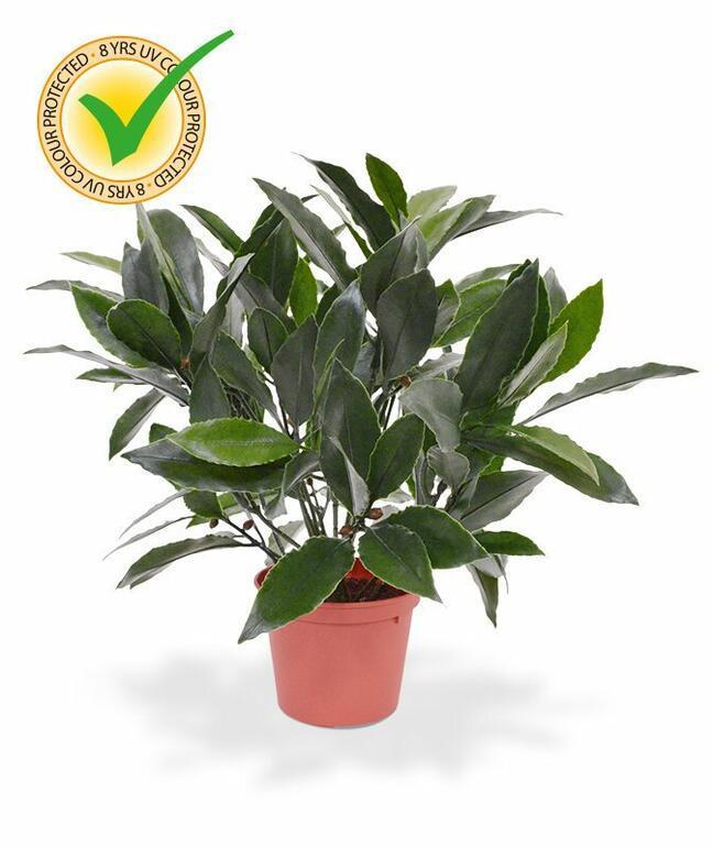 Artificial plant Laurel right 35 cm