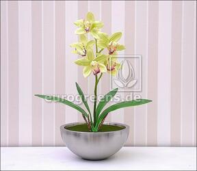 Artificial plant Orchidea Cymbidium light green 50 cm