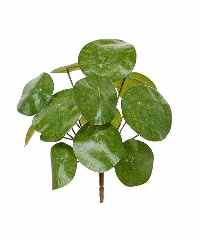 Artificial plant Pilea peperomioides 20 cm