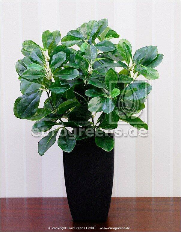 Artificial plant Plum 40 cm