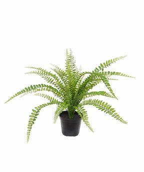 Artificial plant Spleenwort 45 cm