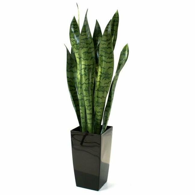 Artificial plant Svokrine tongues 70 cm