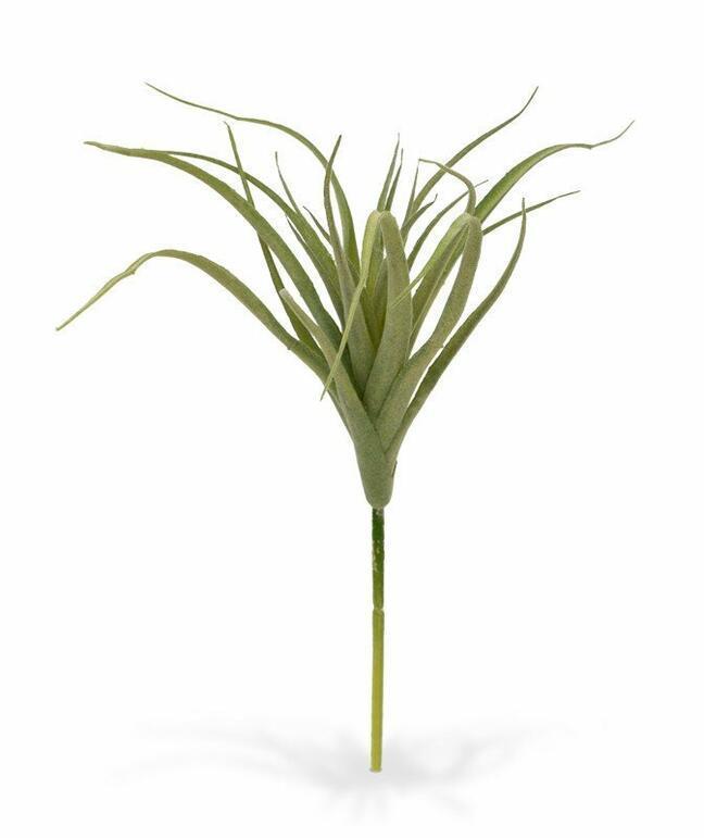 Artificial plant Tilandsia 20 cm