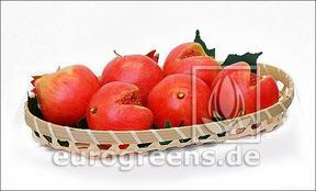 Artificial red pomegranate