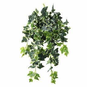 Artificial tendril Ivy white-green 80 cm