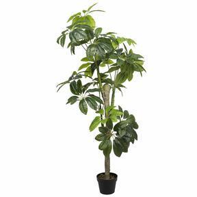 Artificial tree Shefler 155 cm
