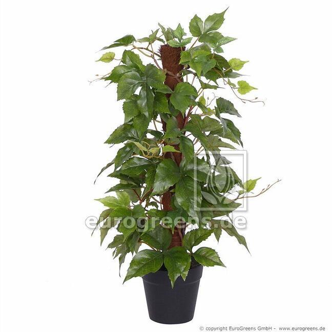 Artificial wild vine plant on Sisal stick 50 cm