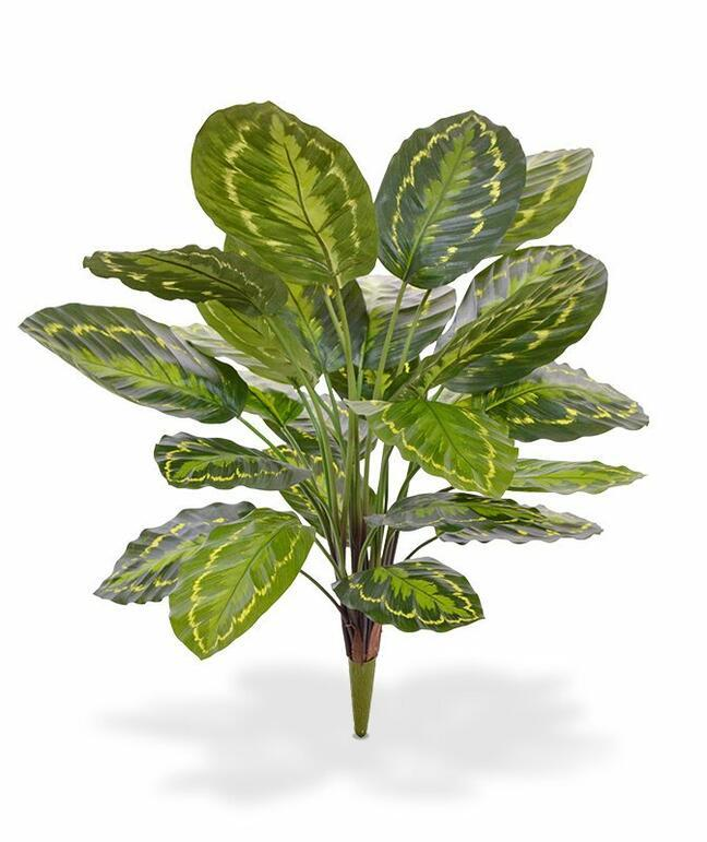 Kalatea artificial plant 65 cm