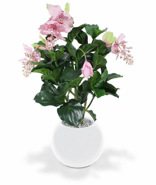 Medinila artificial plant beautiful 100 cm