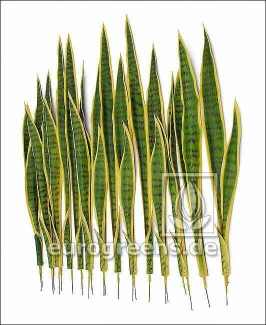 Set of artificial leaves Svokrine tongues 85 cm